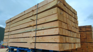 100 x100mm Larch Posts